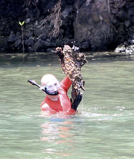 finding stuff in palau