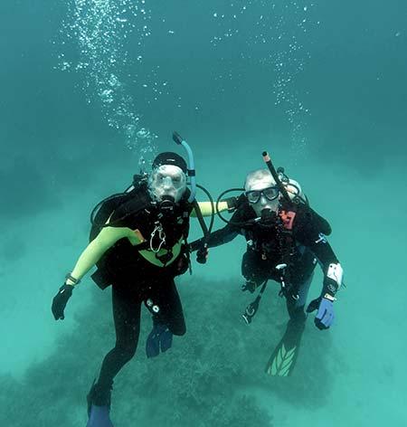 pat and flip diving for bentprop palau
