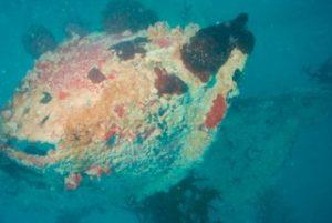 sunken ship in palau