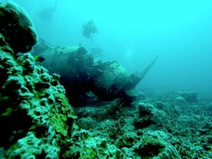 diving the Jake in palau