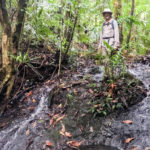 Standing in the jungle while searching for executed WWII MIA and innocents in Palau