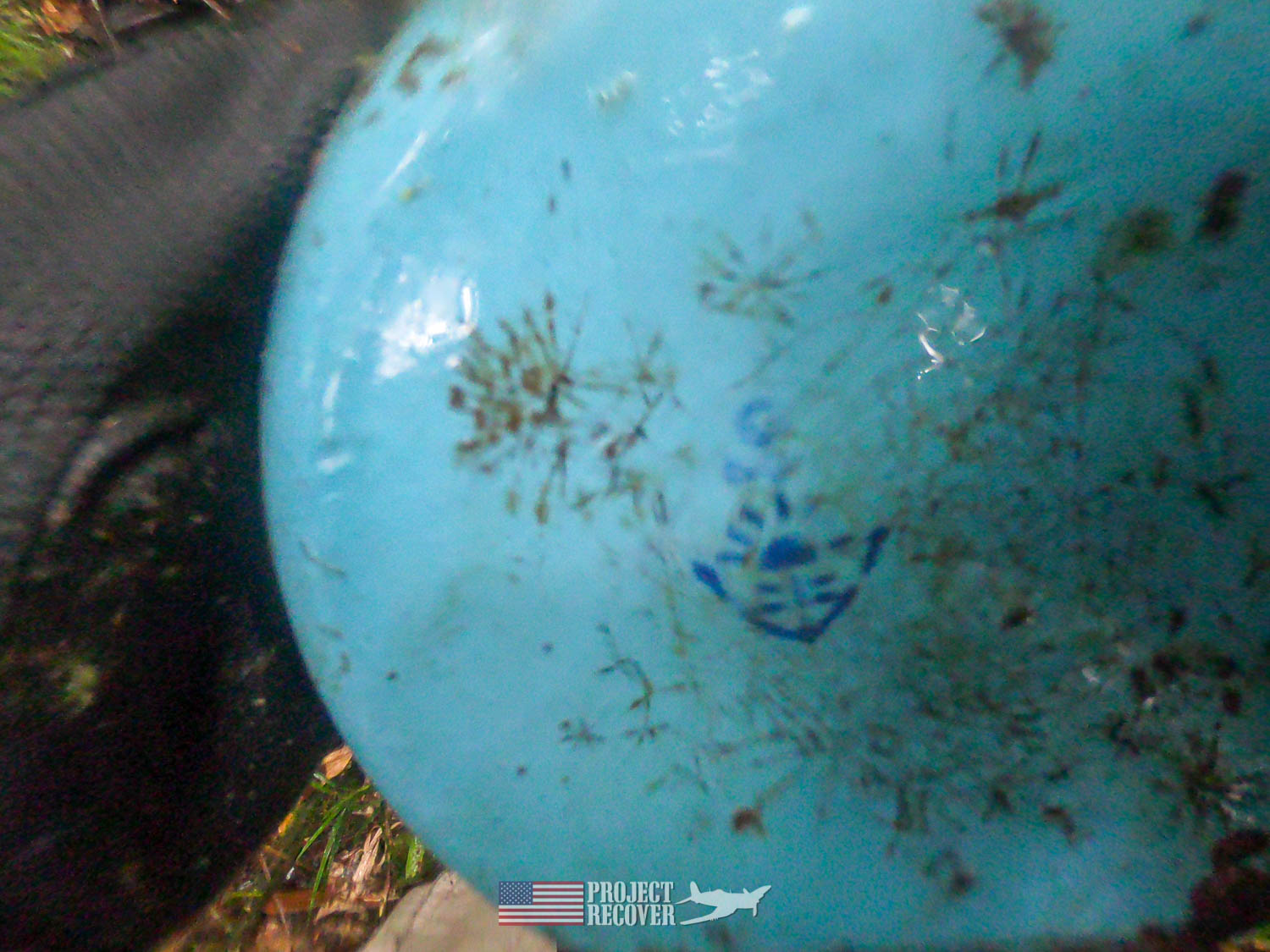 Japanese plate found in jungle - Execution of WWII POWs and Innocents in Palau - Project Recover is committed to bringing the MIA home. Photos by Harry Parker Photography.com
