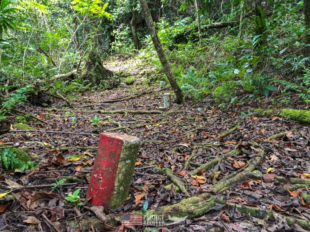 Jungle trail markers in Peleliu,