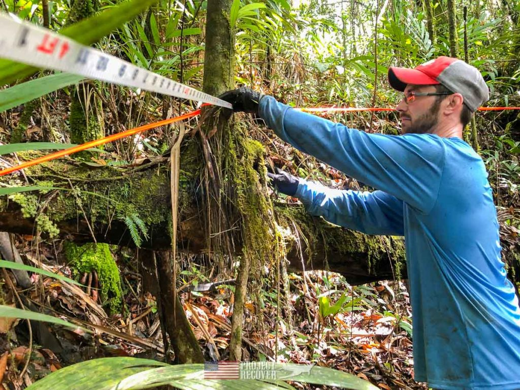 Adam helps measure the perimeter of an MIA dig in Palau. Photo: Harry Parker Photography